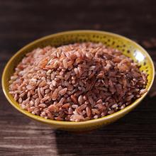 云南红xd古种红软米lo田红糯米稀有杂粮营养红米500g新品特价