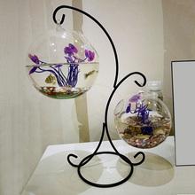 创意桌xj(小)鱼缸(小)型kj态圆形透明玻璃迷你金鱼斗鱼缸家用客厅