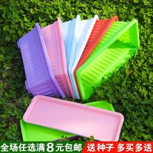 阳台种xk盆长方形塑zp可配托种菜种花通用
