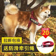 狗狗背xm金毛拉布拉rf项圈边牧萨摩(小)中大型犬狗绳子包邮