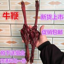 牛鞭 xn大黄牛鞭干bb 中药材滋补养生煲汤泡酒料 另售驴鞭包邮