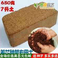 无菌压ye椰粉砖/垫ud砖/椰土/椰糠芽菜无土栽培基质650g
