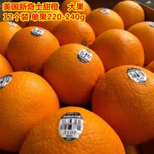 美国进yi新奇士suunst黑标3107新鲜橙子水果12个礼盒装大果