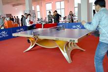 正品双yk展翅王土豪wuDD灯光乒乓球台球桌室内大赛使用球台25mm