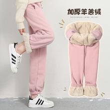 冬季运yo裤女加绒宽ne高腰休闲长裤收口卫裤加厚羊羔绒