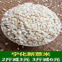 福建宁yo县农家自产re仁五谷杂粮油新货特产500g包邮