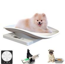 宠物店yt宠物精准活qb称(小)动物体重秤白电子秤称重准确电子磅
