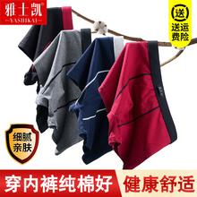 男平角ze纯棉潮流个an年夏季透气四角全棉大码短裤头