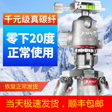 佳鑫悦zfS284Ctw碳纤维三脚架单反相机三角架摄影摄像稳定大炮
