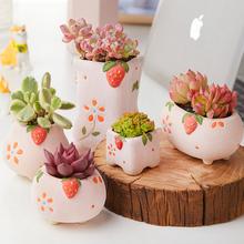 美诺花zg草莓糖陶瓷cc约可爱少女风多肉植物花盆肉肉植物花盆