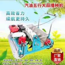 大蒜(小)zg汽油机械稳hx电动的力两行种植机精播4行全自动