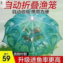 虾笼龙zh网渔网捞鱼as虾黄鳝笼捕虾网伞形折叠加厚自动捕鱼笼