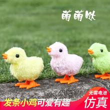 毛绒卡通zl1鸡货源 sc 宝宝创意益智(小)玩具上链发条
