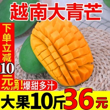 越南大zt芒带箱10sc新鲜现摘水果特大青皮甜心忙5包邮