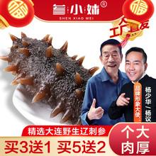 参(小)妹zu大连500er鲜海参鲜活袋装即食辽刺参